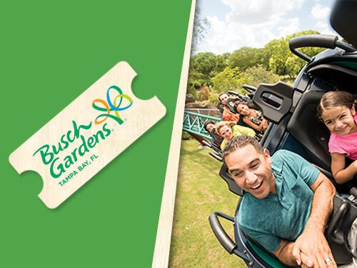 Busch Gardens Single Park Ticket From 79 99 Ticket Dealing In Deals